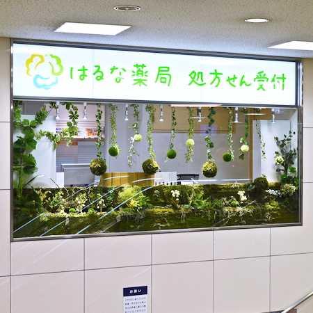 はるな薬局 阪急川西駅前店